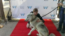 And a wolf. Yeah.